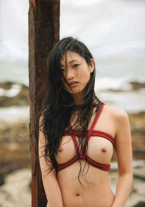 壇蜜(36)のヌード濡れ場やアイコラ等!抜けるエロ画像125枚・79枚目の画像