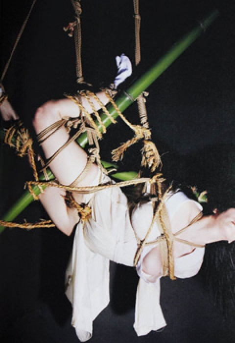 逮捕された小向さんが受けた拷問がこれwwwwwww★小向美奈子エロ画像・3枚目の画像