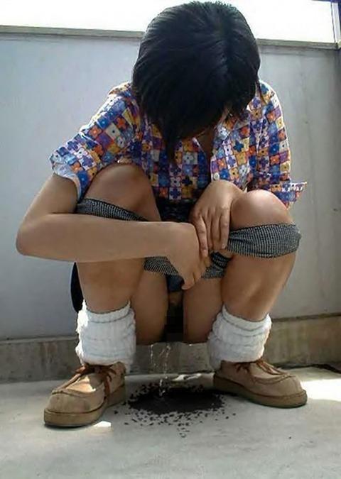 【驚愕】ドM女を調教しすぎた結果・・・野外放尿までする変態雌豚になってしまったンゴwwwwwwww(画像あり)・27枚目の画像