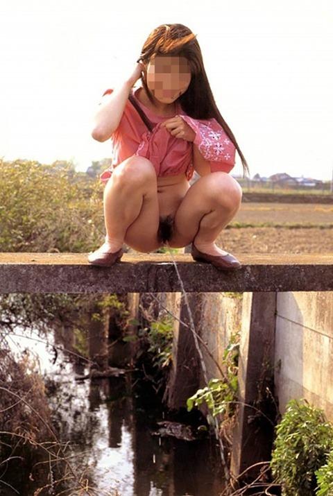 【驚愕】ドM女を調教しすぎた結果・・・野外放尿までする変態雌豚になってしまったンゴwwwwwwww(画像あり)・7枚目の画像