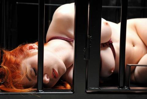 監禁調教という事件性高そうな海外の本気のSMエロ画像30枚・30枚目の画像