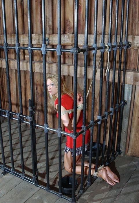 監禁調教という事件性高そうな海外の本気のSMエロ画像30枚・5枚目の画像